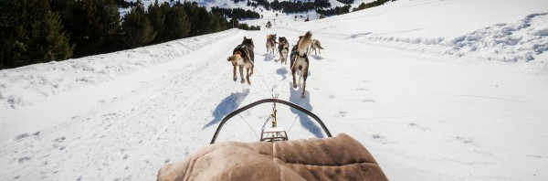 mushing-soldeu